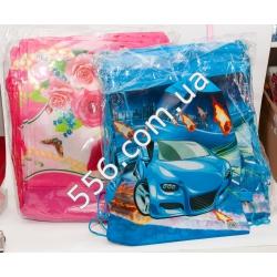 Сумка-рюкзак для сменной обуви(для девочек и мальчиков)